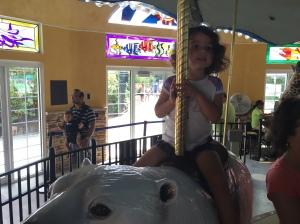 TBZ Carousel