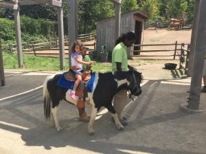 TBZ Pony Ride