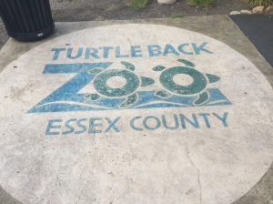 Turtle Back Zoo Logo