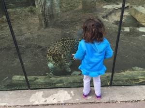 Zoo Visit 02