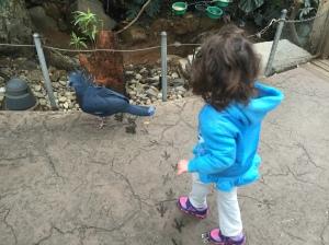 Zoo Visit 03