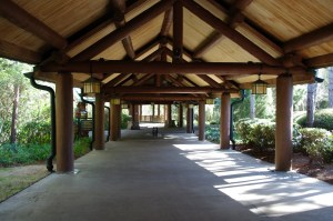 Wilderness Lodge 10