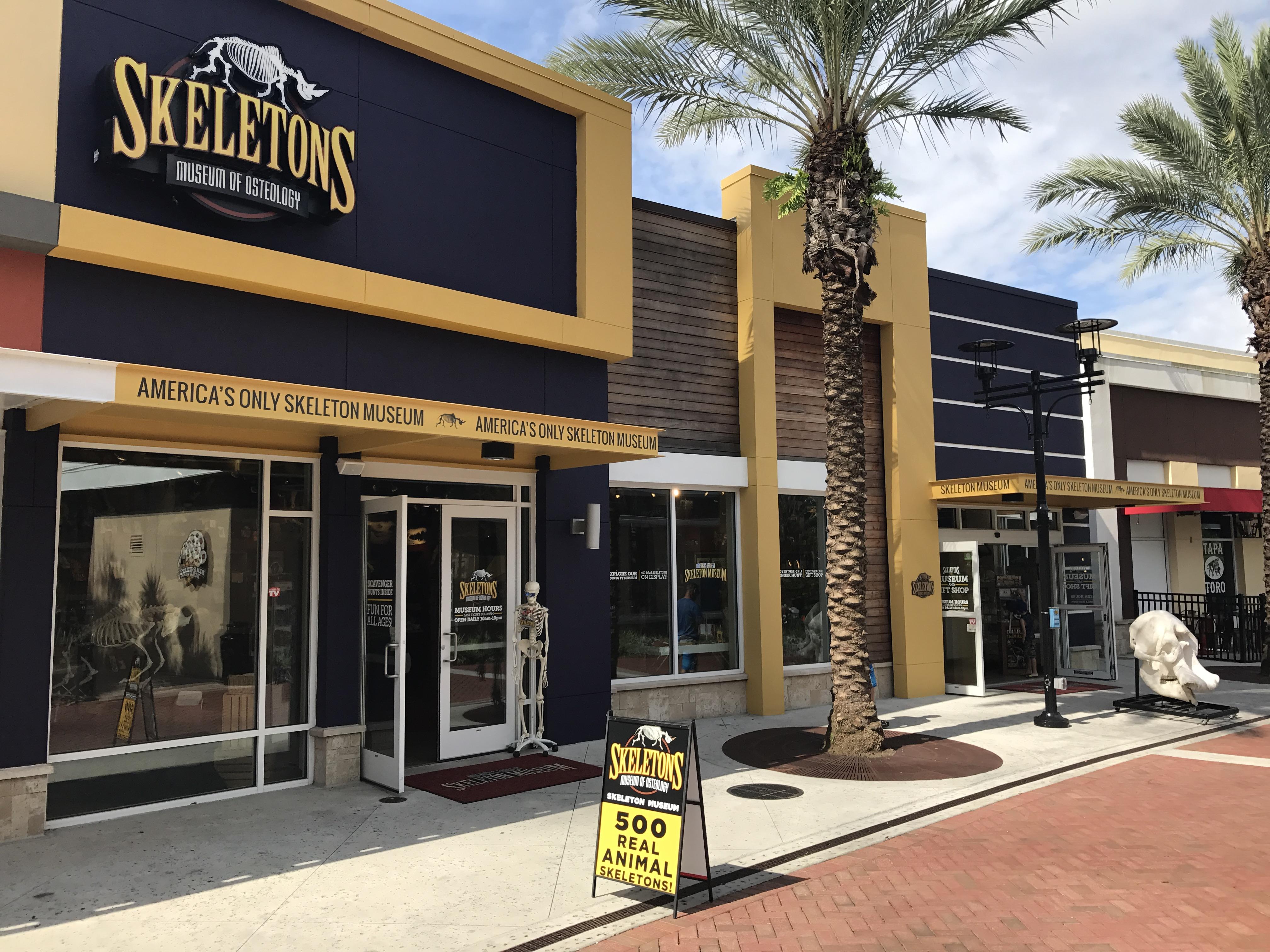 100 Home Design Stores Orlando Interior Design Winter Park Orlando Naples Beasley U0026